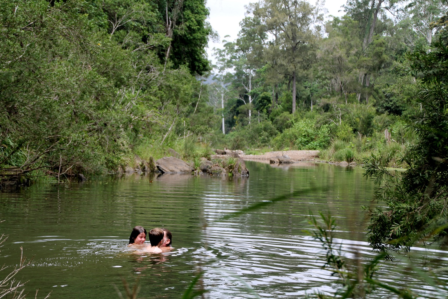 Waterhole Swimming