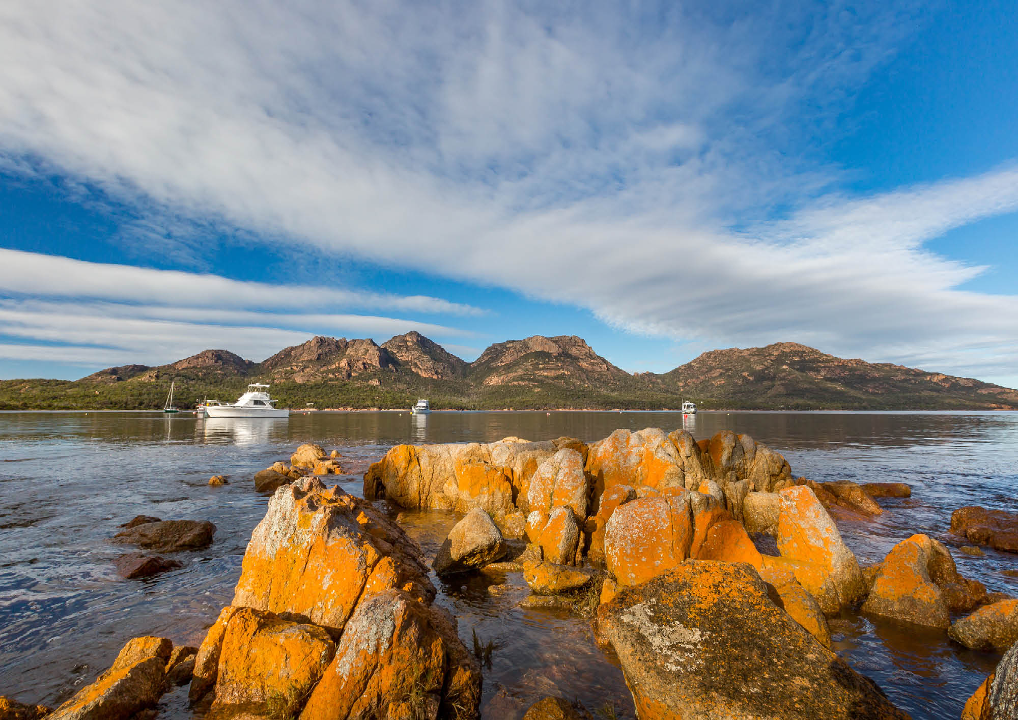 The Big Trip: Tasmania