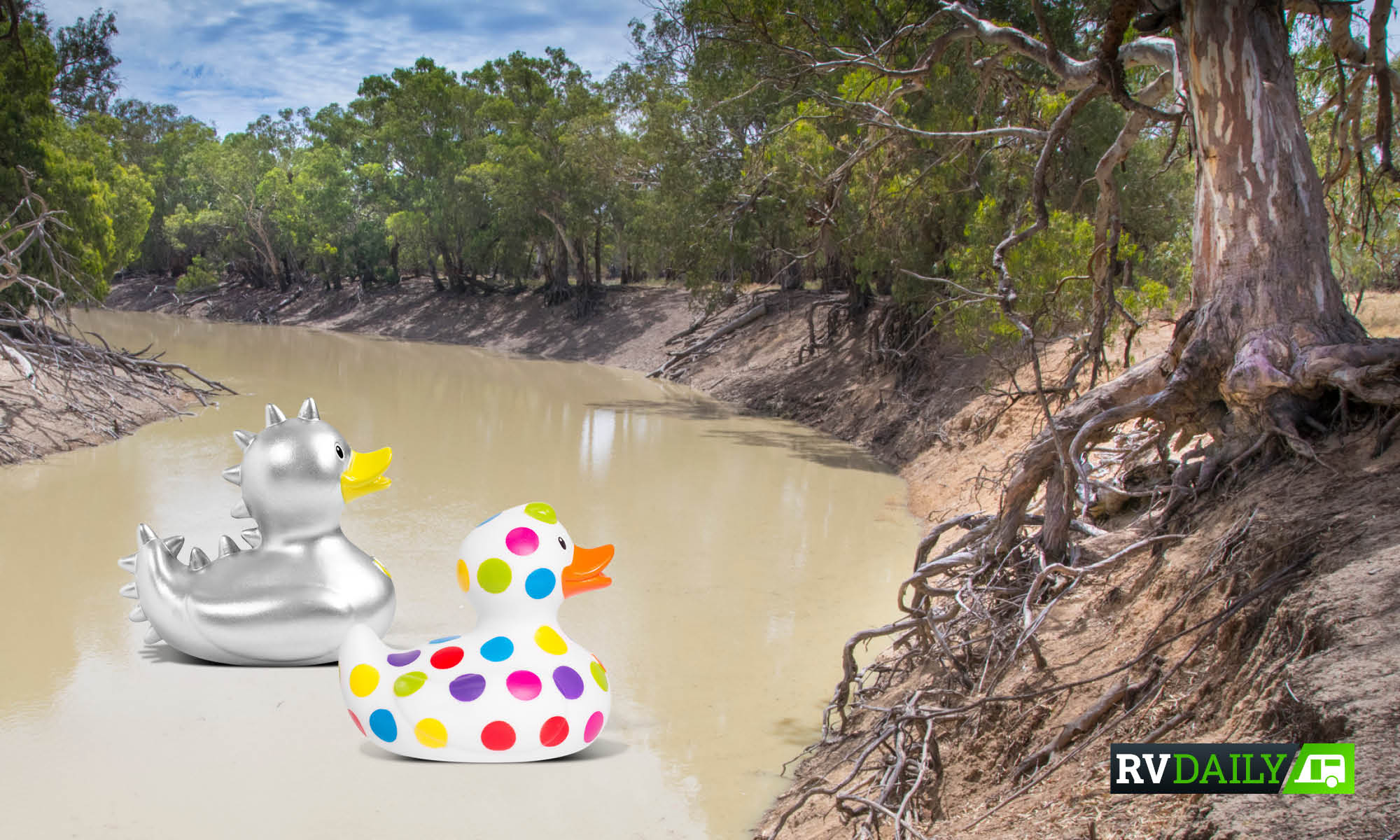 MURRAY-DARLING: WE LITERALLY GIVE TWO DUCKS ABOUT OUR FAMOUS WATERWAYS