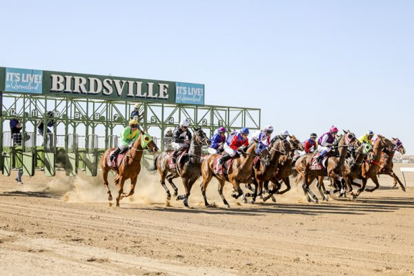 Volunteers needed at the Birdsville Races