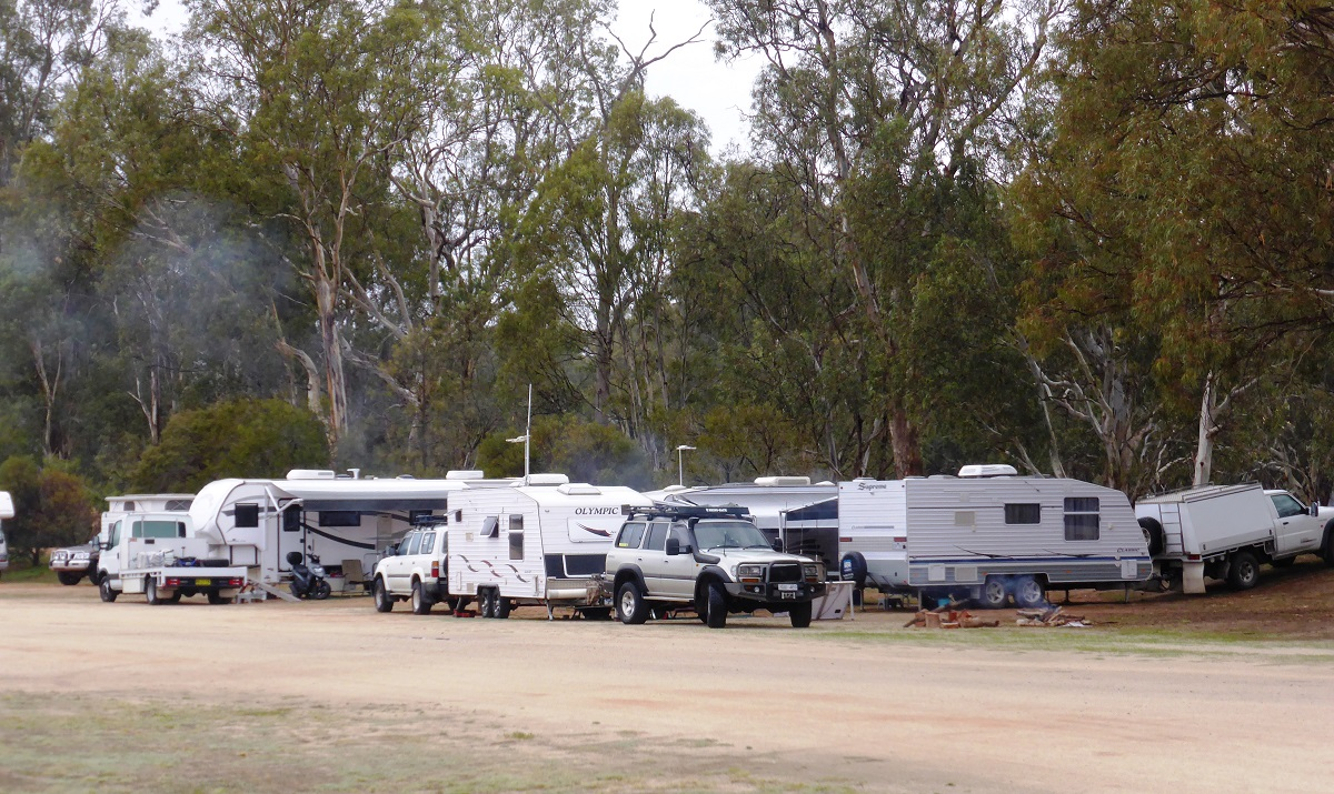 a very busy free camp