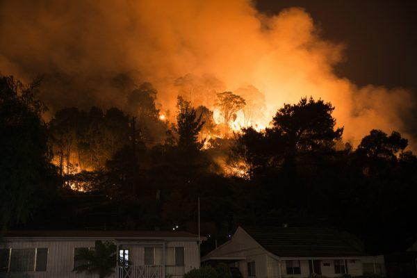NSW caravan dwelling law changed for bushfire victims