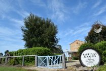 Penola, the country town of miracles. And wine!